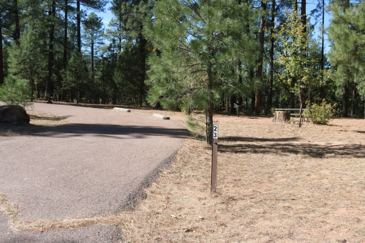 A guide to camping at Sharp Creek Campground - Arizona