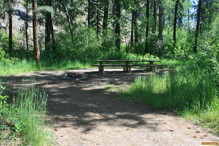 A picture of campsite 7 in Abbot Campground
