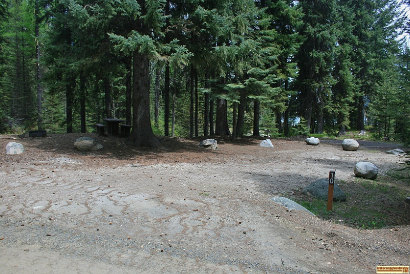 A picture of campsite number 10 in Amanita Campground