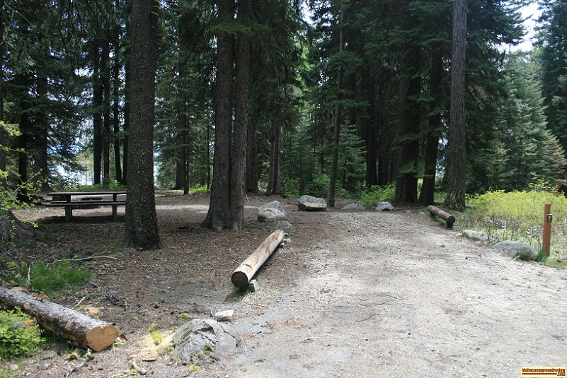 A picture of campsite number 2 in Amanita Campground