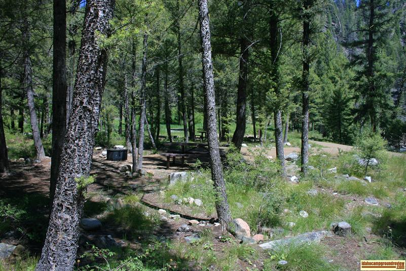 Blind Creek Campground on the Yankee Fork of the Salmon River.