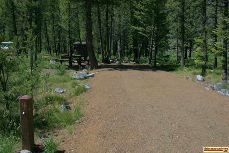 A view one site at Blind Creek Campground on the Yankee Fork of the Salmon River.