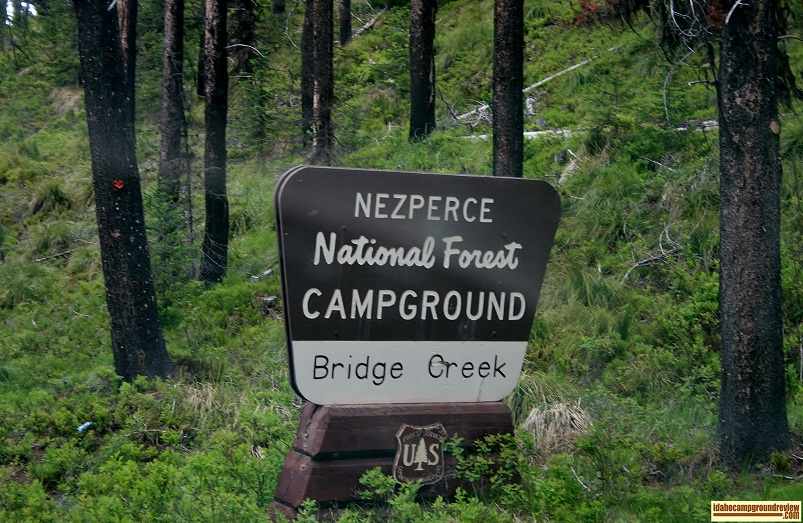 Bridge Creek Campground is only a mile from Red River Hot Springs.