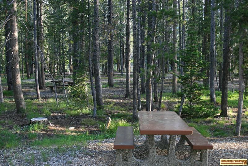 Bull Trout Campground