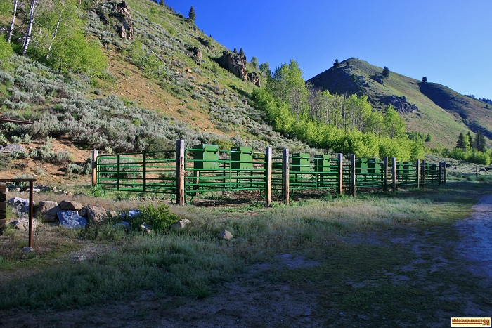 This picture is of the corrals at Canyon Creek Transfer Camp on Big Smokey Creek.