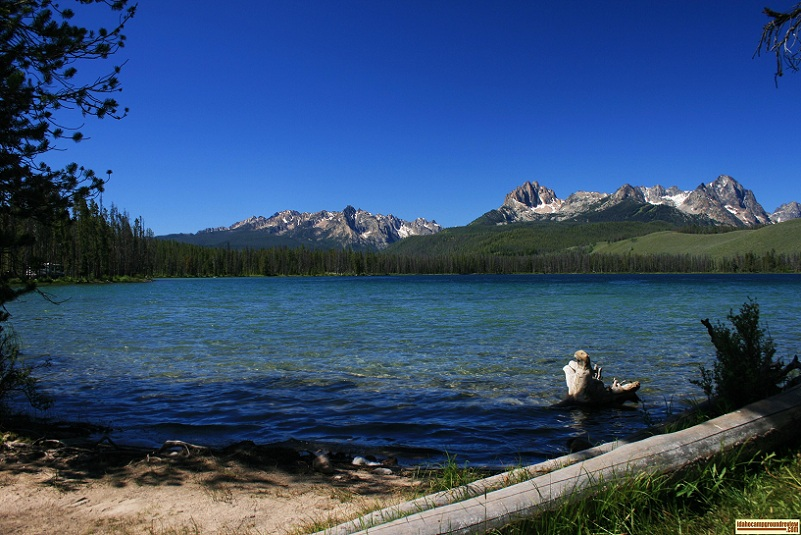 Chinook Bay Campground on Little Redfish Lake