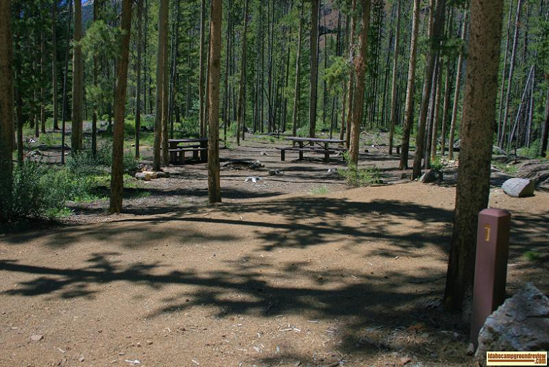 Double site in Custer #1 Campground on the Yankee Fork of the Salmon River.