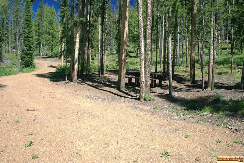 Typical site in Custer #1 Campground on the Yankee Fork of the Salmon River.