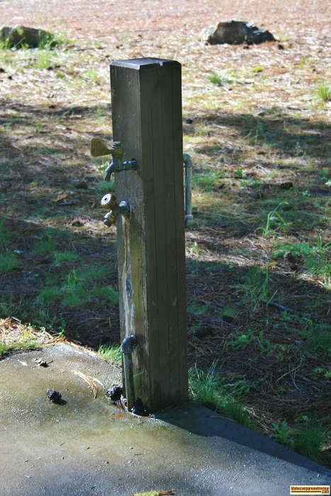Water is available in Dog Creek Campground through a pressurizes system.