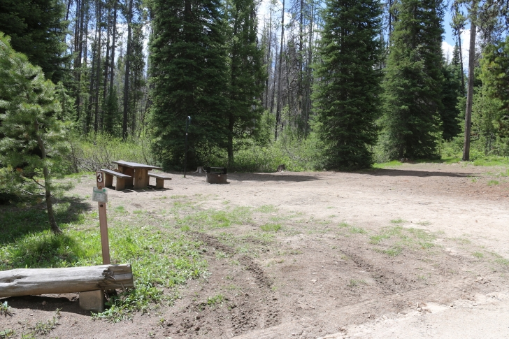 Edna Creek Campsite #3 has the space to squeeze in an extra vehicle if they will let you...