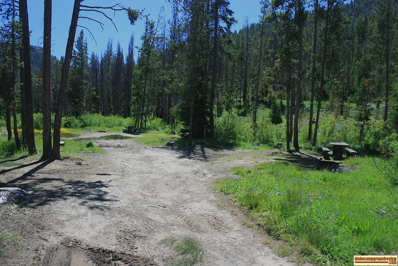 View of Eightmile Campground  on the Yankee Fork of the Salmon River NE of Stanley, Idaho.