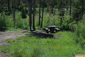 This is one of the camp sites in Eightmile Campground  on the Yankee Fork of the Salmon River NE of Stanley, Idaho.