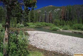 View o Yankee Fork of the Salmon River at Eightmile Campground.
