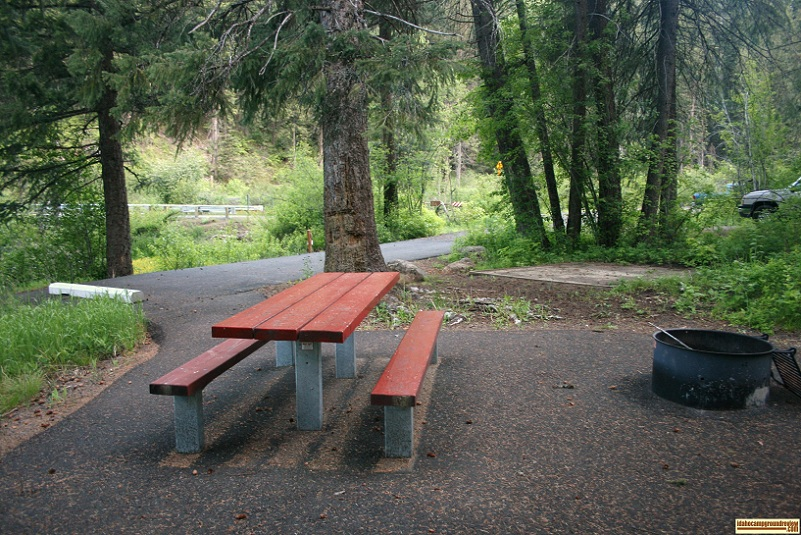 Single camping site in Evergreen Campground near lost lake