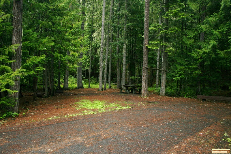 Giant Whitepine Campground RV camping site