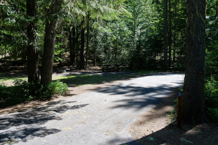 A picture of campsite number 6 in Giant White Pine Campground.