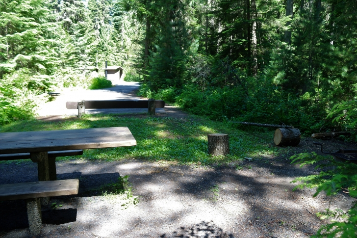 A picture of what I believe is campsite 13 in Giant White Pine Campground which shows the fire ring and picnic table.