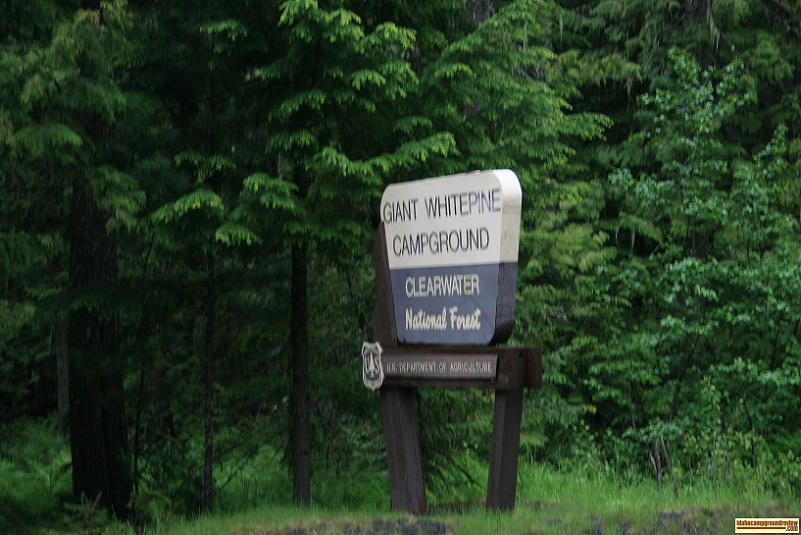 A picture of the Sign at the entrance of Giant Whitepine Campground
