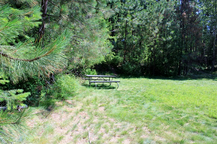 Hawleys Landing Campground - Recreation