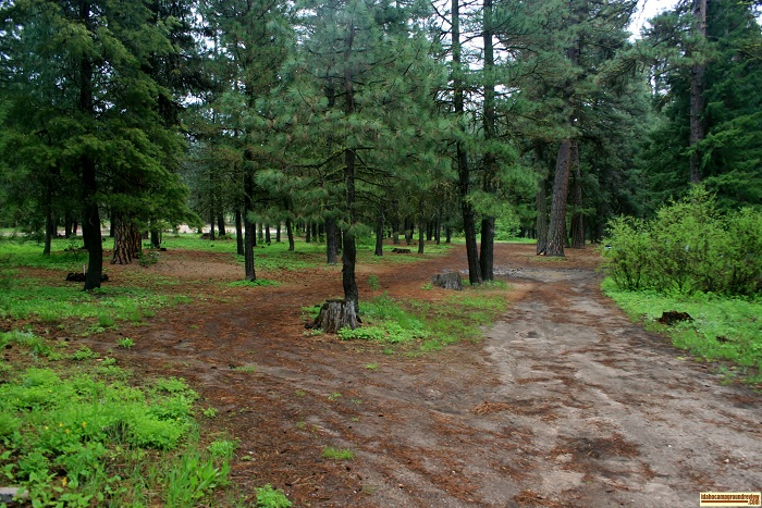 Ice Springs Campground for those who love camping in Idaho.