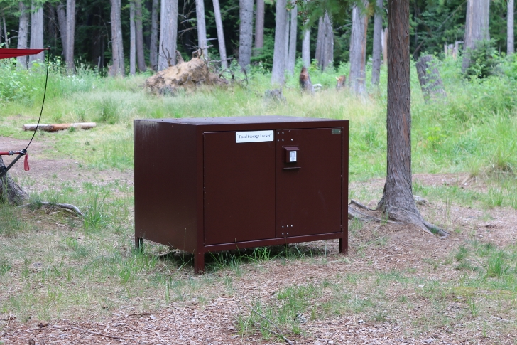 The Campsites In Loop E Have Bear Resitant Food Storage Units.