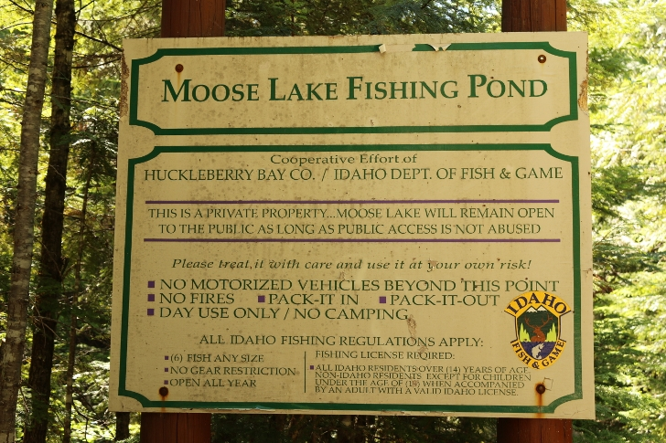 We found Moose Lake Fishing Pond a short distance from Indian Creek Campground.