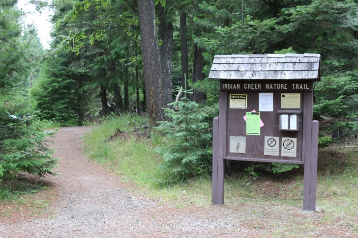 You will find the entrance to Indian Creek Nature Trail near the picnic area.