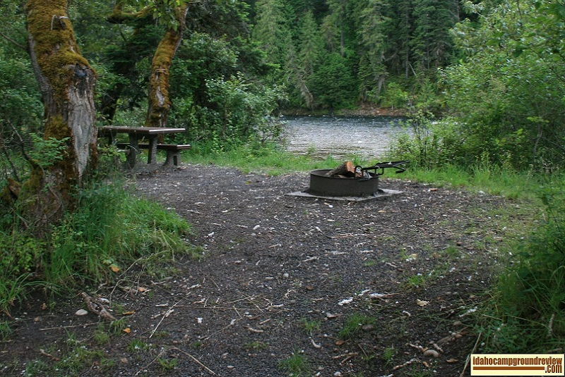 Johnson Bar Campground on the Selway River