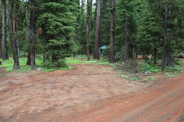 Kennally Creek Forest Camp - Campsites