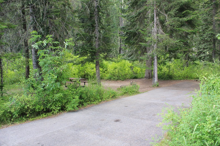 Kit Price Campground on the Coeur d