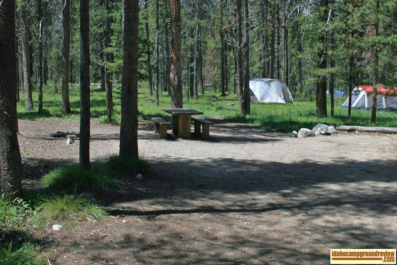 Typical camping site in Lola Creek Campground on Marsh Creek