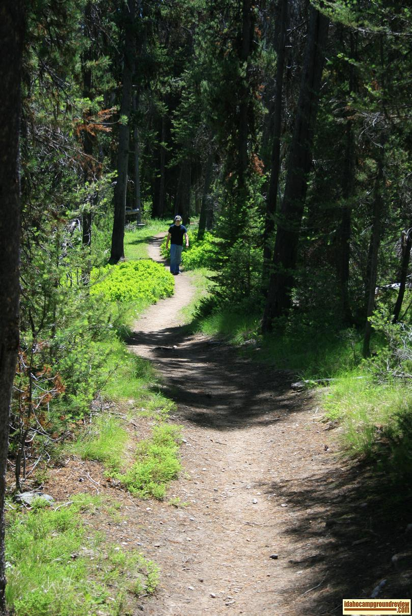 This trail leads down to Marsh Creek and on into the Frank Church River of No Return Wilderness Area.