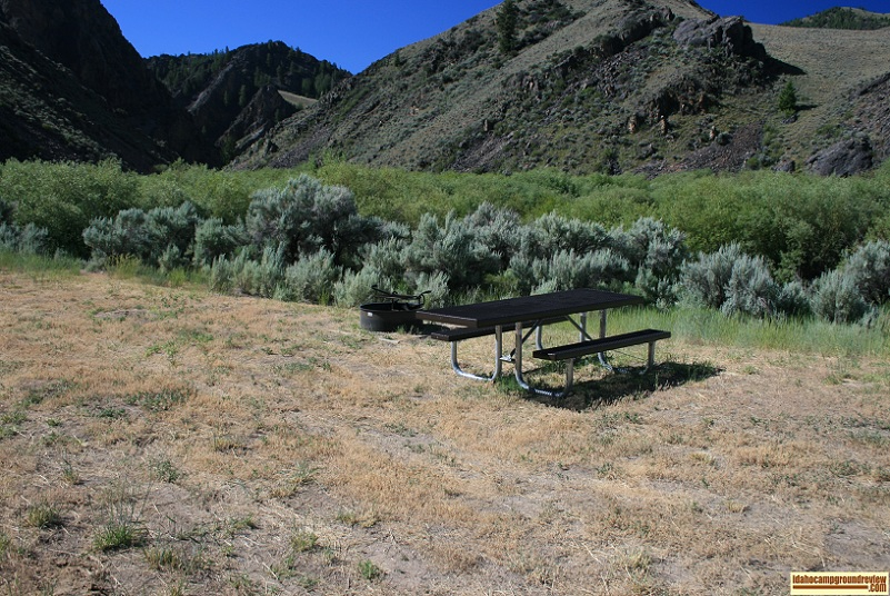 This is a view of 1 of the 4 sites in Morgan Creek Recreation Site and view of nearby mountains.