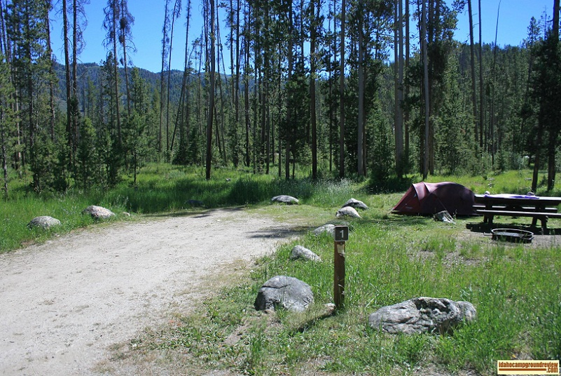 Mountain View Campground on Little Redfish Lake