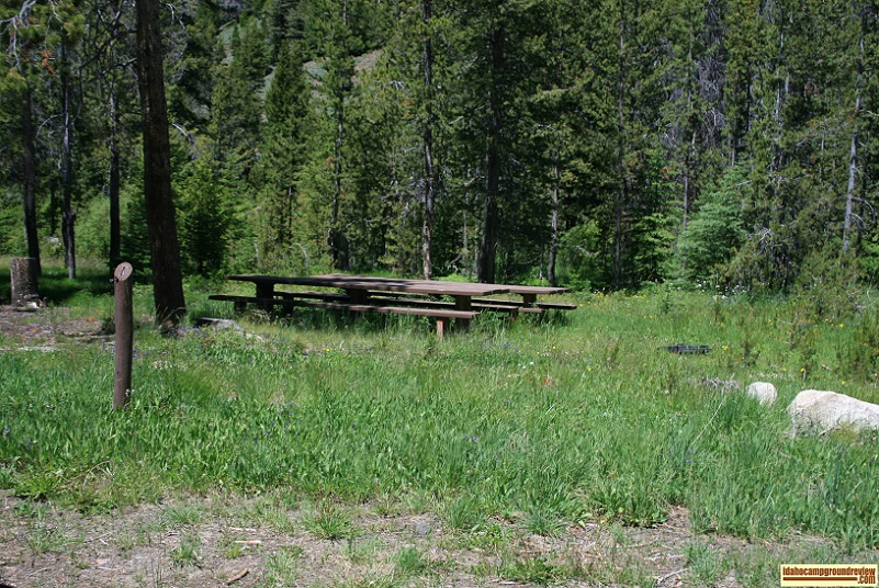 This is Camp Site #1 which is a group site in Park Creek Campground in the Pioneer Mountains of Idaho.
