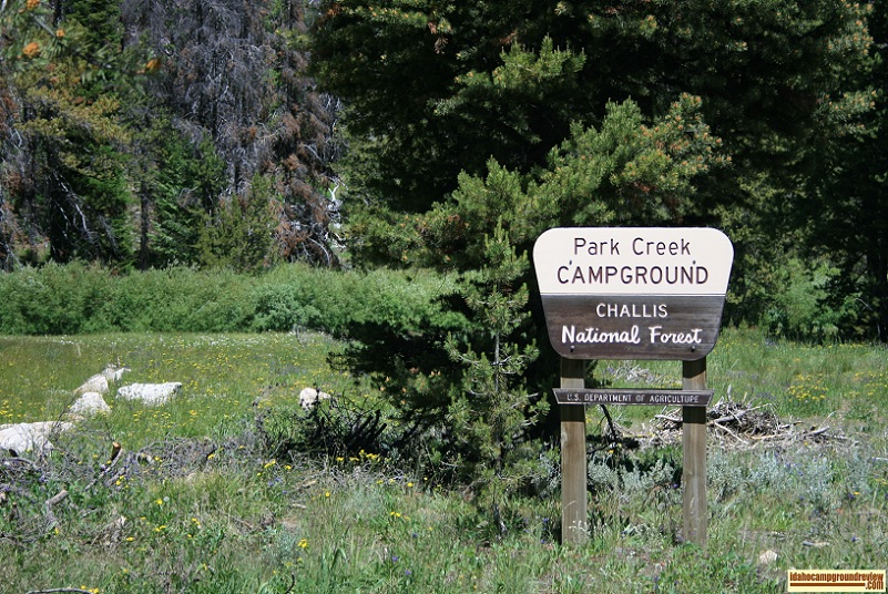 Park Creek Campground in the Pioneer Mountains.