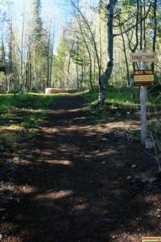 Pettit Campground's Eagle Trail