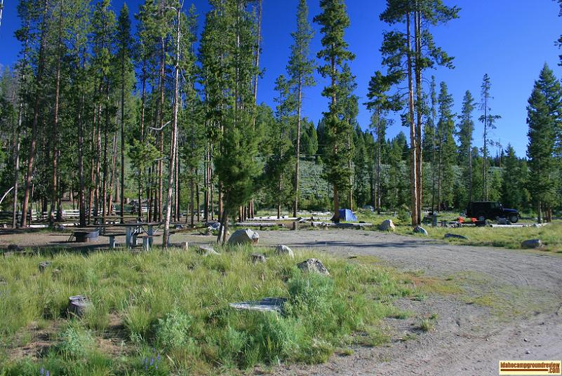 This is a view of several camp sites in Pettit Lake Campground.