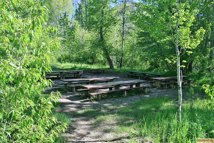 Campsite #5 at Pioneer Campground has several picnic tables and an extra large fire ring.