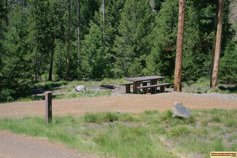 Camping site in Pole Flat Campground on the Yankee Fork of the Salmon River the elevation is about 6100 feet.