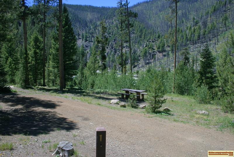 RV camp site #1 in Pole Flat Campground on the Yankee Fork of the Salmon River the elevation is about 6100 feet.
