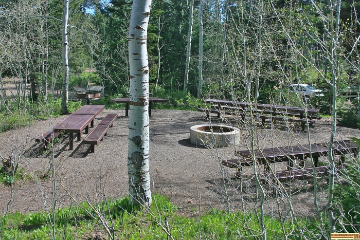 This is a view of the Fire Pit / picnic area in Loop