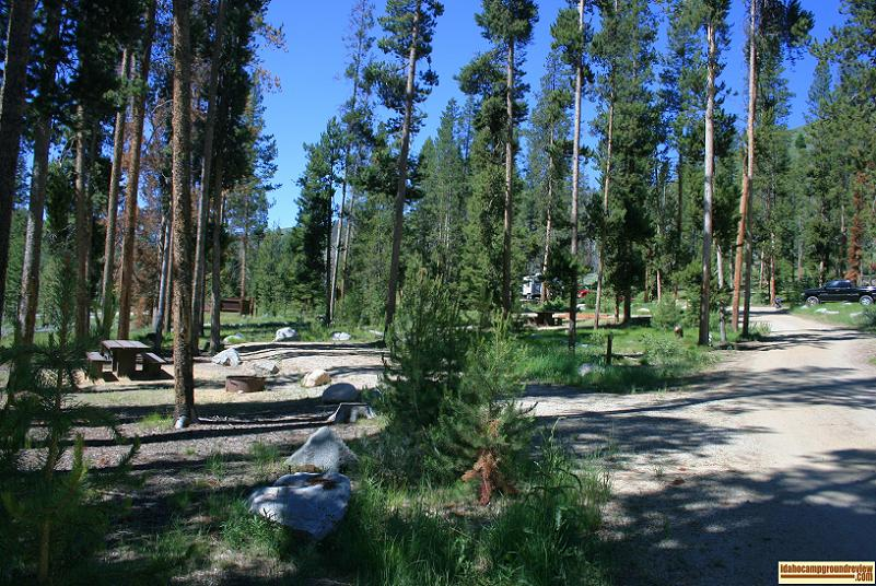 This is typical of camp sites on the up hill side of Riverside Campground NE of Stanley, Idaho.