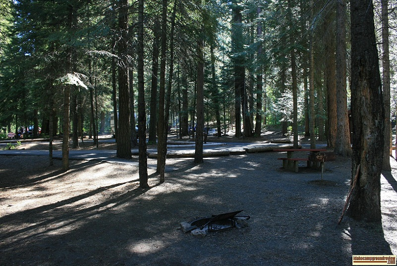 RV camp site in sagehen creek campground