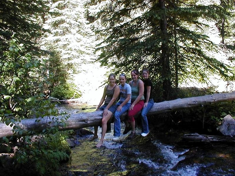 picture of four friends on a log over sagehen creek near sagehen creek campground