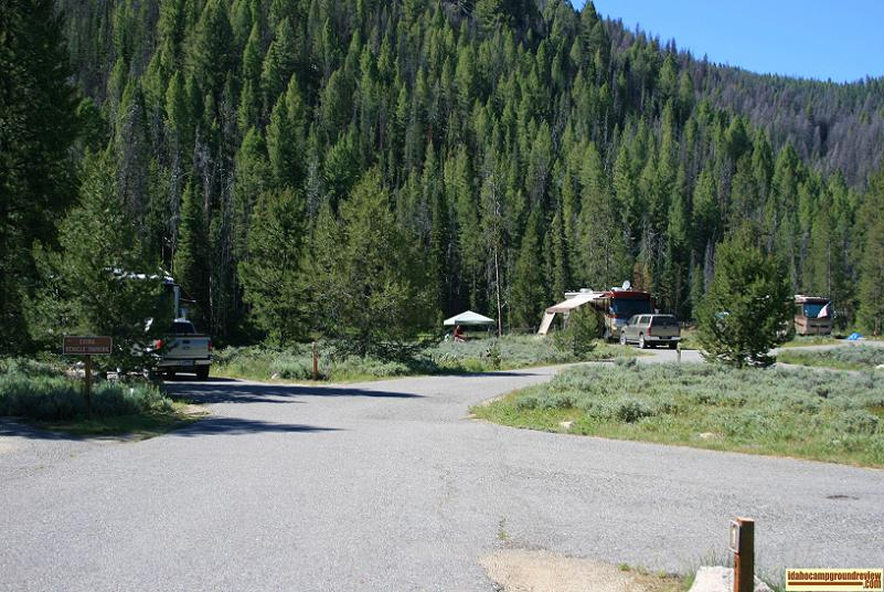 This is a view of some of the camp sites in Salmon River Campground NE of Stanley, Idaho.