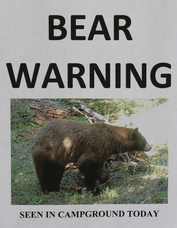 There was a bear near the campground about 2 weeks before we came but it had moved on.