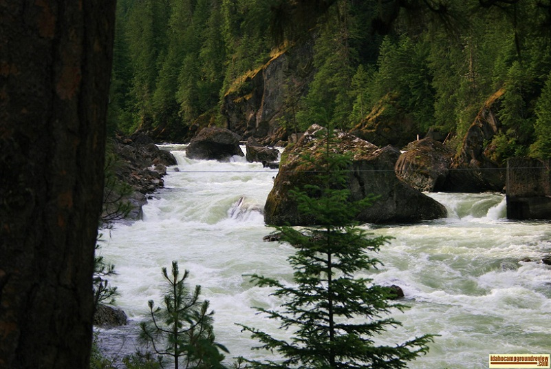 View of Selway Falls, where the Native Americans still fish as the Salmon pause in their journey to their spawning grounds.