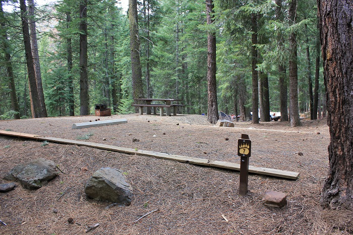 Spring Creek Campground near Hitt Mountain.