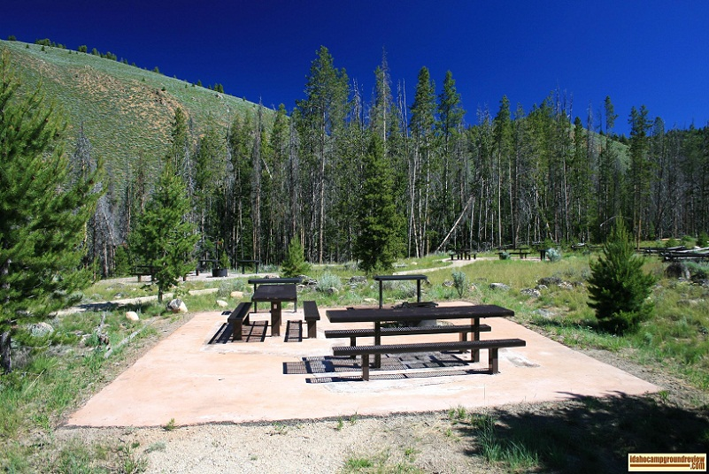Sunny Gulch Campground on the Salmon River servers as overflow for the Redfish Lake area campgrounds.